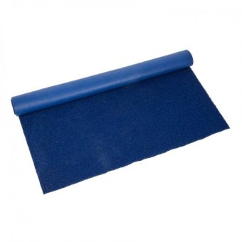 Car matting 4 ft x 10ft blue Cut your own for Vans Price Philippines