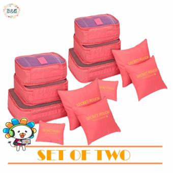 (Random Color) D&D 6 in 1 Clothes Storage Bags Packing Cube Travel Luggage Organizer Bag (SET OF TWO)