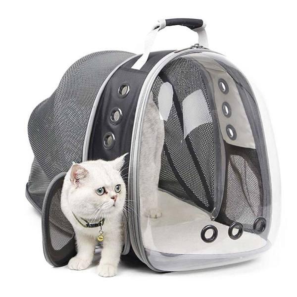 Túi vận chuyển mèo thoáng khí Máy vận chuyển vật nuôi có thể mở rộng Túi du lịch xách tay Túi đựng vật nuôi