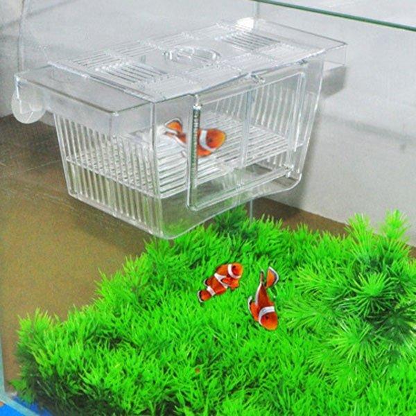 Fashion aquarium fish tank fish breeding box intl for Fish breeder box