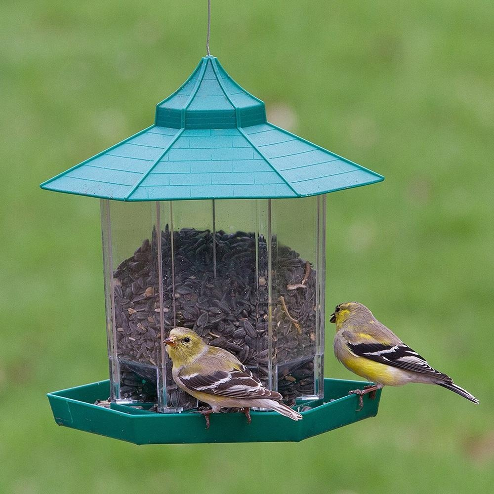 k effort the s trff less coated bird green finch p birdfeeder rainbow feeder and feeders depot home verdi tornado steel tube powder