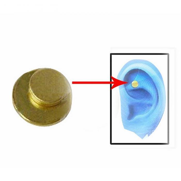Moonar 2pcs Zero Smoke Auricular Therapy Quit Smoking Magnets Intl Source 2PCS Quit