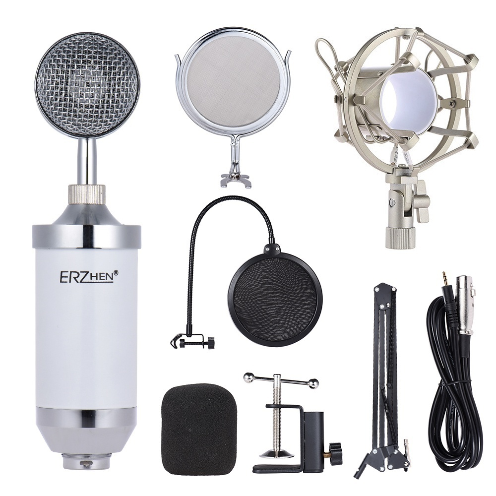 Philippines Professional Studio Broadcasting Recording Condenser Microphone Circuit Kit For Network Singing Etc The Adopts Accurate Electronic Low Noise